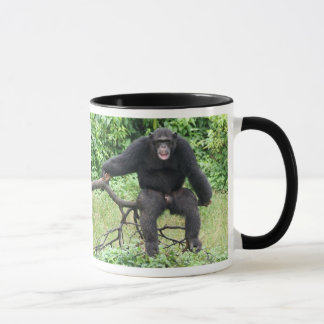 Chimpanzee in Africa Mug