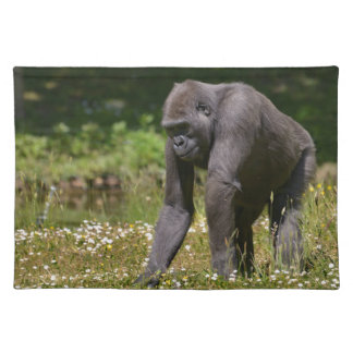 Chimpanzee in the flowering grass placemat