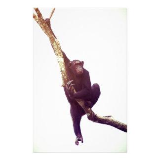 Chimpanzee in Tree Custom Stationery