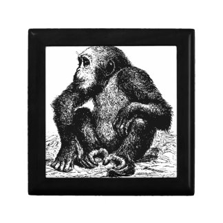 chimpanzee keepsake boxes