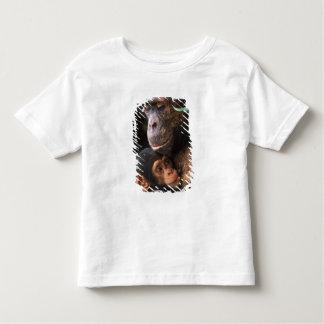Chimpanzee Mother Nurturing Baby Shirts