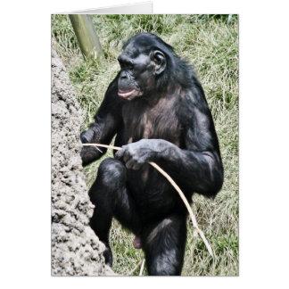 Chimpanzee Photo w Encouraging Thomas Edison Quote Card