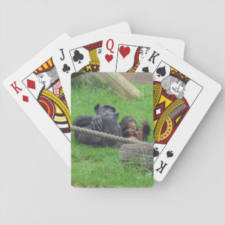 Chimpanzee Playing Cards