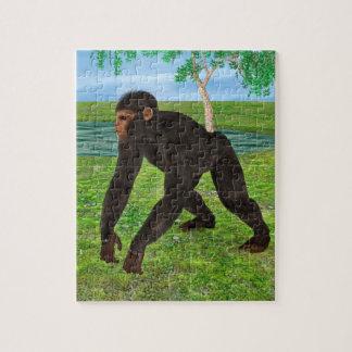 Chimpanzee Puzzle