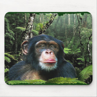 Chimpanzee Rainforest Conservation Mousepad