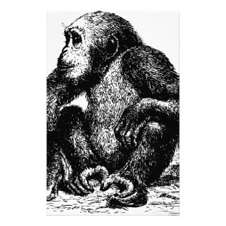 chimpanzee stationery design