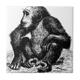 chimpanzee tiles