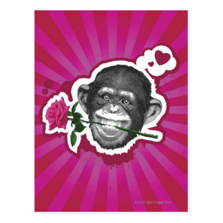 Chimpanzee with a Rose in his Mouth Postcard