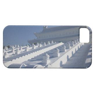 CHINA, Heilongjiang Province, Haerbin (Harbin). 2 iPhone 5 Case
