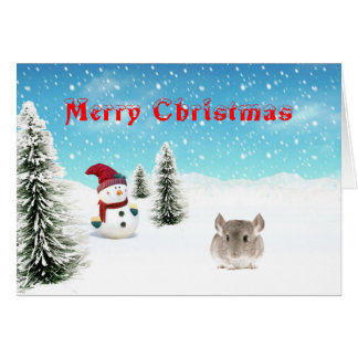 Chinchilla Christmas Card