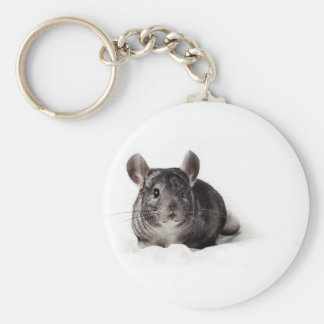 Chinchilla gris mignon dans la couverture porte-clé rond