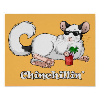 """""""Chinchillin'"""" 20"""" x 16"""" Poster"""