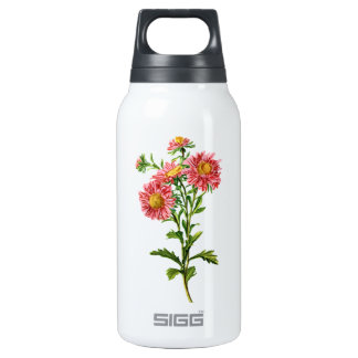 Chinese Asters Drawn From Nature Insulated Water Bottle