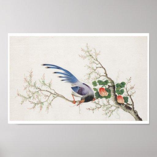 Chinese Bird Painting Print