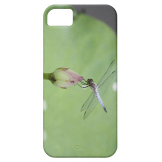 Chinese Blue Dragonfly on Water Lily Bud iPhone 5 Case