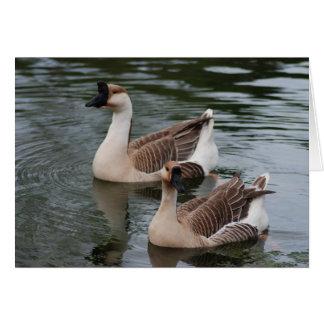 Chinese Brown Geese Greeting Card