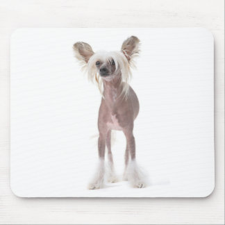 Chinese Crested Dog Mouspad Mouse Pad