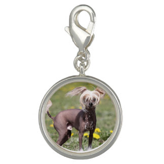 Chinese Crested Dog Photo Charm