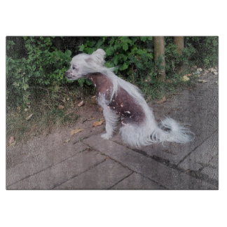 Chinese_Crested_Dog sitting Cutting Board