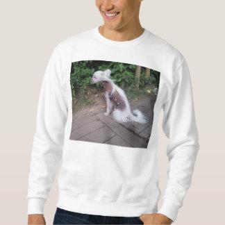 Chinese_Crested_Dog sitting Sweatshirt