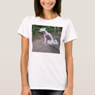 Chinese_Crested_Dog sitting T-Shirt