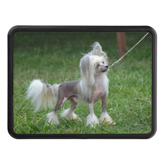 Chinese Crested Dog Tow Hitch Cover