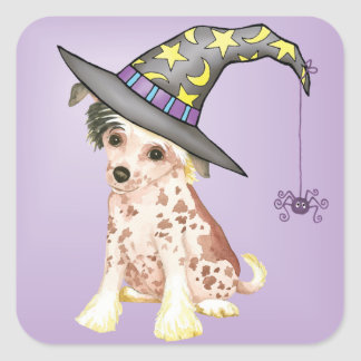 Chinese Crested Witch Square Sticker