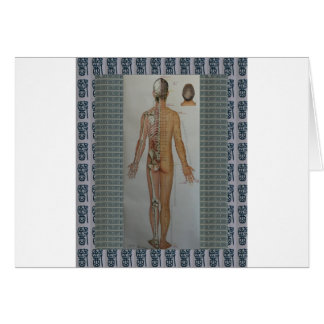 Chinese Doctor Back body acupuncture point map art Card