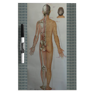 Chinese Doctor Back body acupuncture point map art Dry Erase Whiteboard