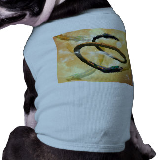 Chinese dragon in the universe pet clothes