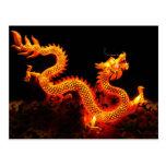 Chinese Dragon Lantern Postcard