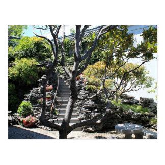 Chinese Garden, Chinatown, Sydney, Australia Postcard