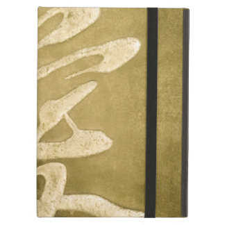 Chinese Love In Stone iPad Air Cases