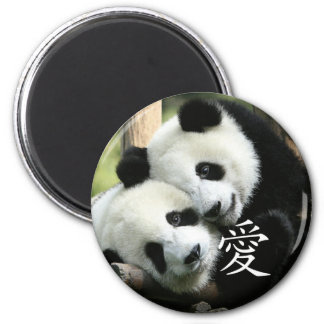 Chinese Loving Little Giant Pandas Magnet