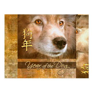 Chinese New Year of the Dog Gold Eyes Postcard