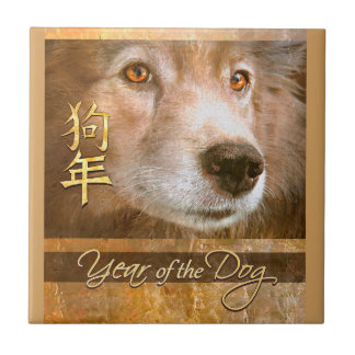 Chinese New Year of the Dog Gold Eyes Tile