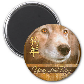Chinese New Year of the Dog Golden Eyes Magnet