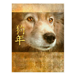 Chinese New Year of the Dog Golden Eyes Postcard