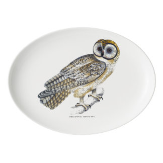 Chinese Owl Plate
