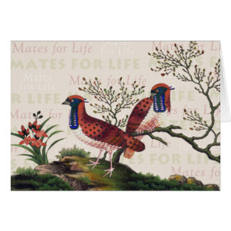 Chinese Pheasants Valentine's Day Card