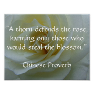 Chinese Proverb Rose Poster
