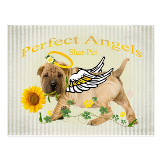Chinese Shar-pei Perfect Angel w Daisy Postcard