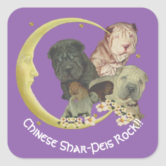 Chinese Shar-Pei Puppies Rock!! on purple Square Sticker