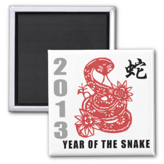 Chinese Zodiac Snake 2013 Square Magnet