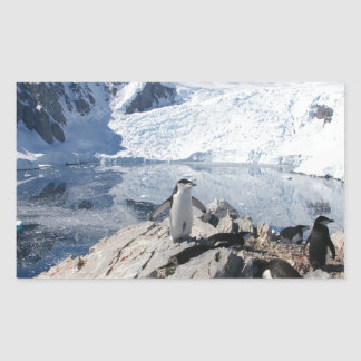 Chinstrap Penguins in Antarctica Sticker