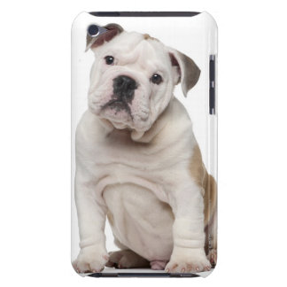 Chiot anglais de bouledogue (2 mois) coque iPod touch