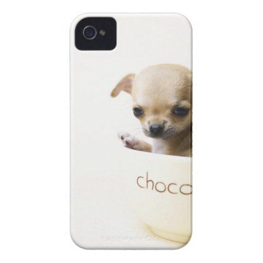 Chiot de chiwawa dans la cuvette (cultivée) coque iPhone 4 Case-Mate