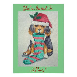 chiot noir et brun mignon avec le bas de Noël
