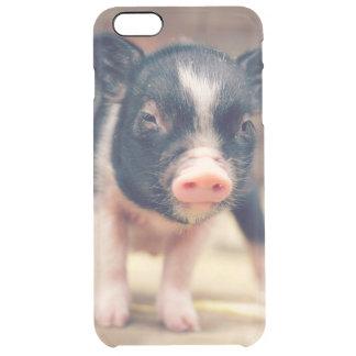 Chiot pie de porc pour des amants de porc coque iPhone 6 plus