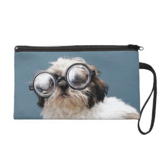 Chiot portant les lunettes épaisses pochettes avec dragonne